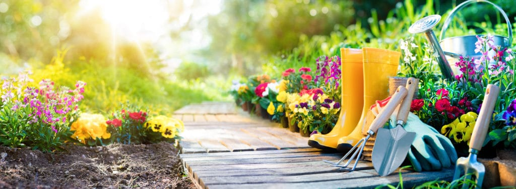 Garden path with wellington boots and tools next to it